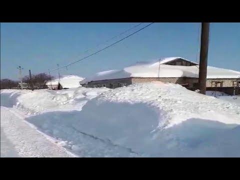 Саратовскую область заваливает снегом