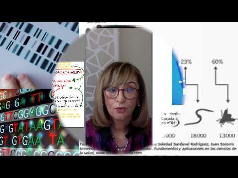 ADN ANALISIS 2 / CienciaConcienciaCritica C3