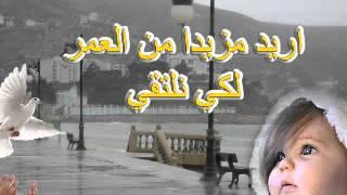 Ya Taib El Galb