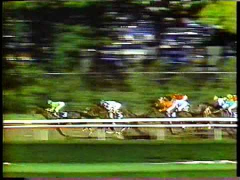 Devil's Bag  1983 Champagne Stakes
