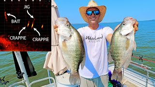 Fishing for 3LB CRAPPIE with LIVESCOPE! (GIANT CRAPPIE)