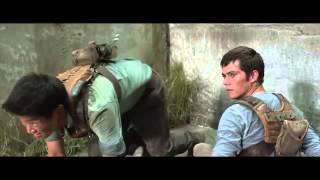 'The Maze Runner'   Deleted Scene   Solving The Maze