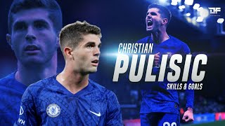 Christian Pulisic 2019 - Skills & Goals - HD