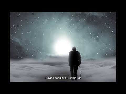 saying good bye - Bjarke Tan