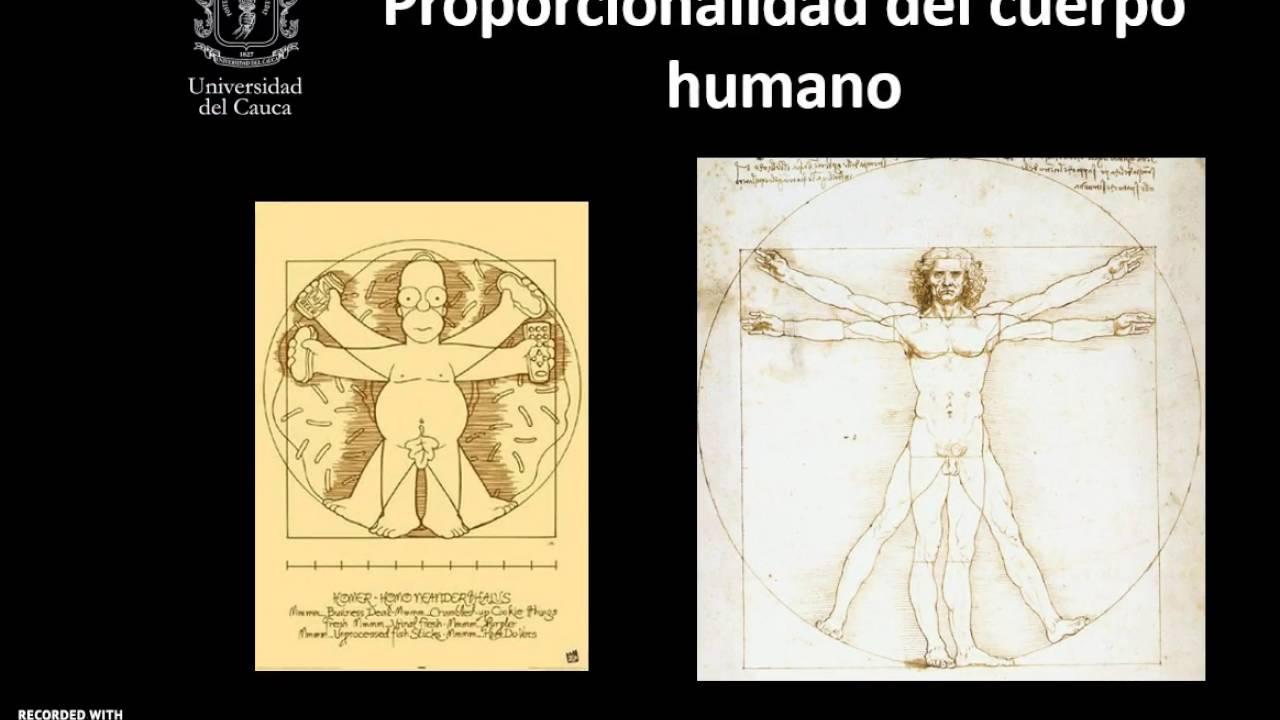 C14 A05 Anatomia y fisiologia del ojo - YouTube