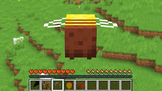 PLAY MINECRAFT AS A BEE!