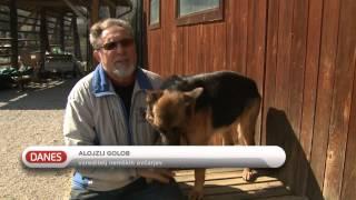 Policijski psi čakajo nove sodelavce