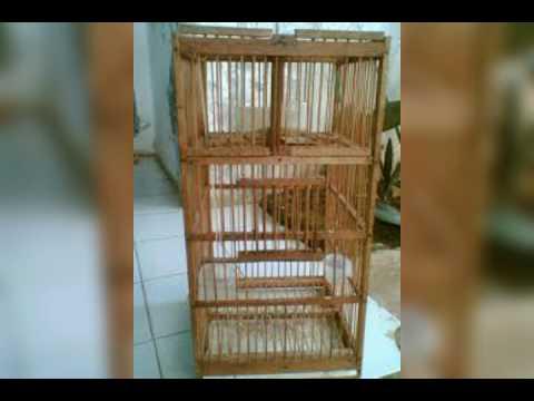 Suara Pikat Burung 4 ( kolibri,gereja,prenjak,ciblek,pleci dll)