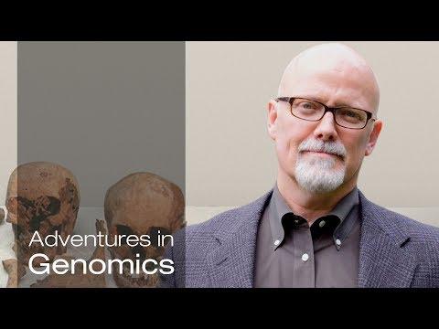 The Power of Mitochondrial DNA Heteroplasmy - Adventures in Genomics