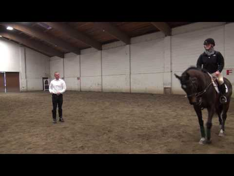 Krzysztof Sadowski, Dressage Lesson at Garret Mountain Equestrian Center 03/20/17