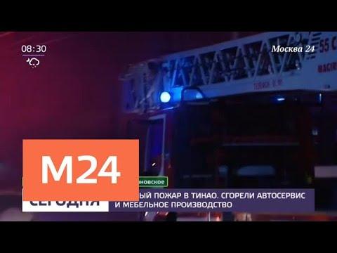 Пожар в автосервисе в ТиНАО ликвидировали - Москва 24