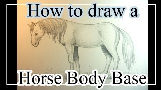 How To Draw A Horse Body Base