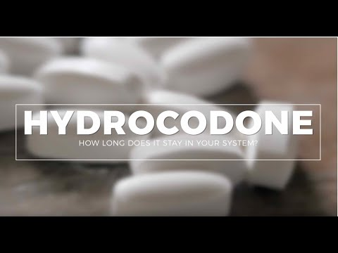 How Long Does Hydrocodone Stay In Your System?  #Drugtest #Urinetest #BloodTest #HairTest