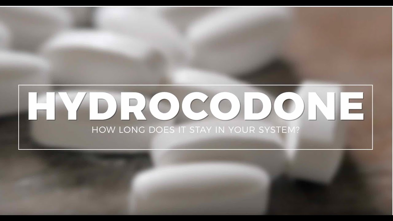 How Long Does Hydrocodone Stay In Your System Drugtest Urinetest