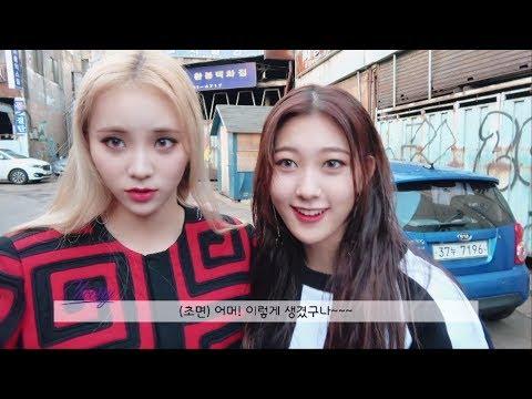 이달의소녀탐구 #213 (LOONA TV #213)