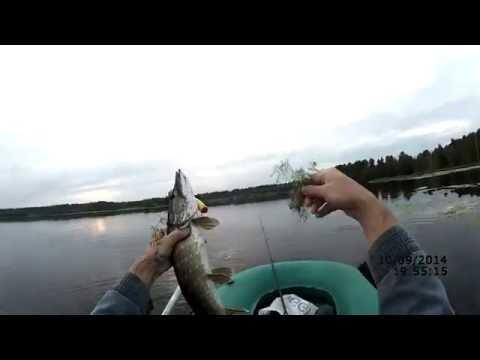 Ловля щуки на воблер осенью (видео-отчет) Рыбалка 10 сентября 2014  Ищем ключик к щуке;)