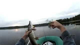 Ловля щуки на воблер осенью (видео-отчет) Рыбалка 10 сентября 2014  Ищем ключик к щуке;).