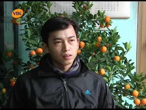 kenh truyen hinh vbc can can cong ly ky an 10 nam tu oan p1