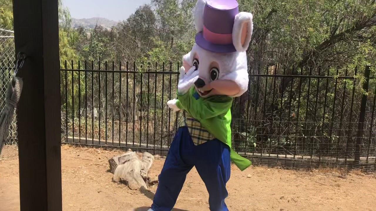 Mascot Gets Funky