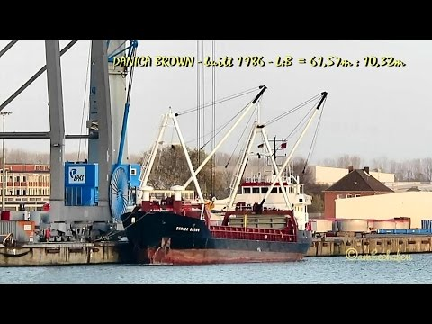 coaster DANICA BROWN OXFY2 IMO 8421872 Emden cargo seaship merchant vessel KüMo Seeschiff