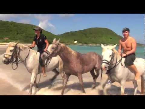 Guadeloupe Trotter - Jour 1 - Découverte de Saint-François