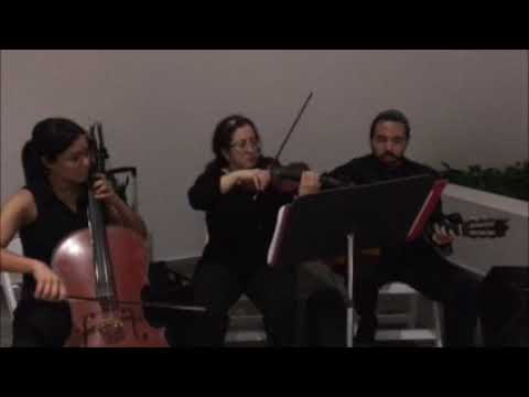 Classy Strings Trio | Allied Music Solutions