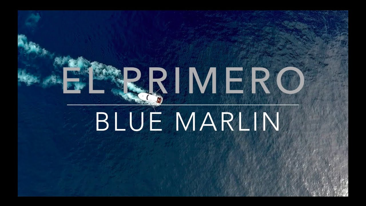 Sports Fishing-Costa Rica-Marlin-Sailfish
