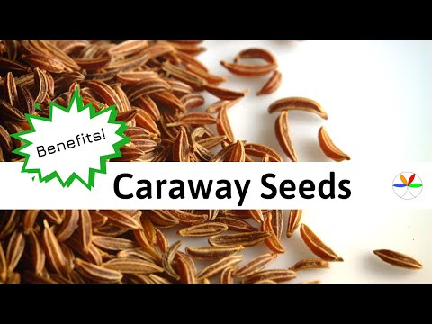 Exposing Caraway Seeds Healing Secrets!