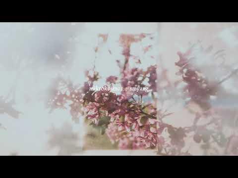 BTS (방탄소년단) 소우주 (Mikrokosmos) - Music Box Edition