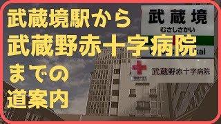 【武蔵野赤十字病院】武蔵境駅からムーバスを使わずに歩きました(アクセス,行き方,道順)