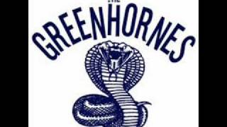 Watch Greenhornes Shame And Misery video