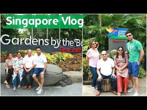 Travel Vlog : Singapore | Day 4 | Jurong Bird Park & Garden By the Bay | Kavya K