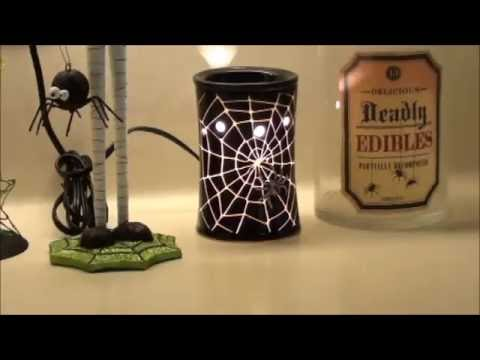 Warmer Tour! Come check out my wax warmer set up!