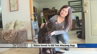 Officer Forced To Shoot Two Dogs Attacking Another Dog