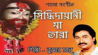 siddhidayani-maa-tara-audio-jukebox-kumar-sanu-shyama-sangeet