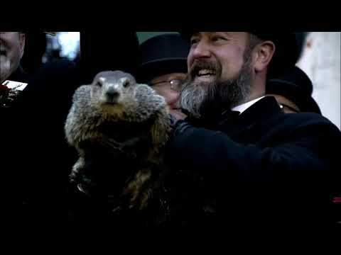 How accurate is the groundhog?