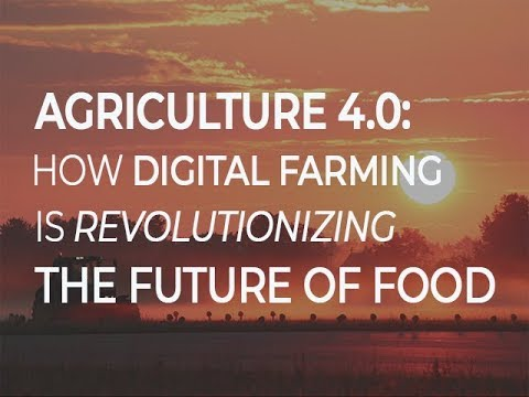 Agriculture 4.0: How digital farming is revolutionizing the