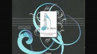 Concerto in re minore bwv 1043 per 2 violini: Largo ma non tanto - johann sebastian bach