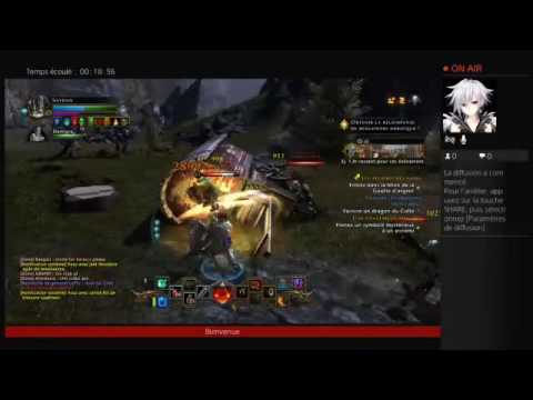 Neverwinter  paladin 62  progression
