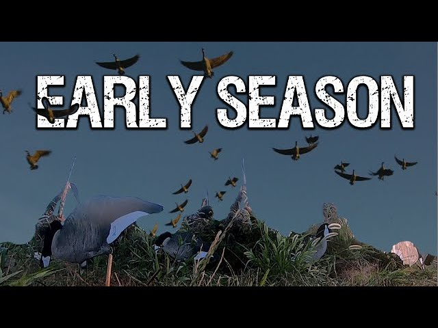Early Season Goose Hunt - Decoy Placement Tips
