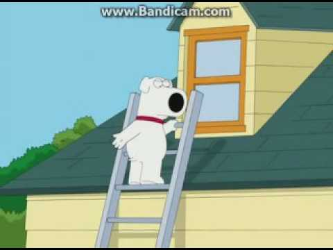 All 9/11/Arab jokes in Family Guy