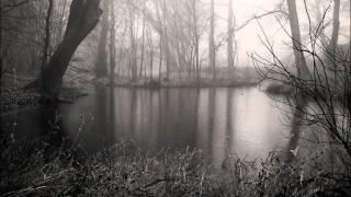 Jahresringe  - Schwinden ruhiger Zeiten