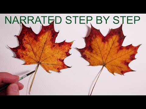How to Draw a Leaf: Narrated Step by Step