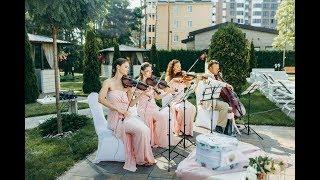 Свадьба в персиковых тонах Макса&Натали. 26.08.17