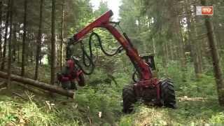 TraktorTV Folge 07 - WF Trac mit Harvester-Aggregat im harten Waldeinsatz