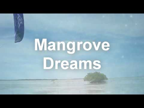FLYSURFER SPEED 3 12m Purple Deluxe - MANGROVE DREAMS - Limited Edition! Aboards Flip 145cm