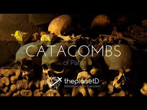 Paris Underground: The Catacombs Tour