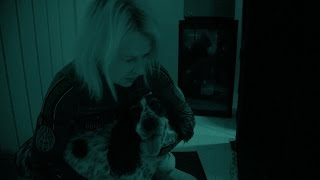 The night vision test - Cats v Dogs: Which is Best? Episode 1 Preview - BBC Two