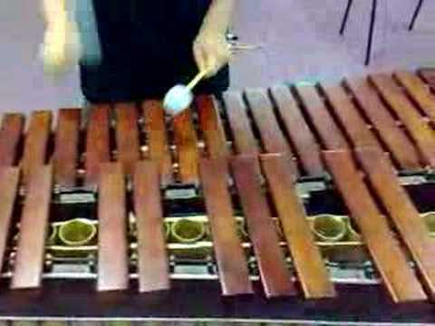 flight of the bumblebee(marimba)