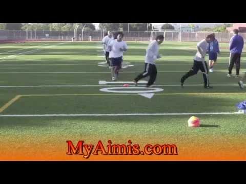 professional soccer training drills  Video